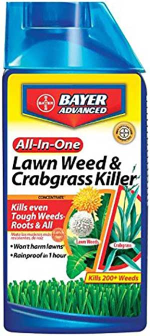Bayer-Advanced-Weed-and-Crabgrass-Killer Review