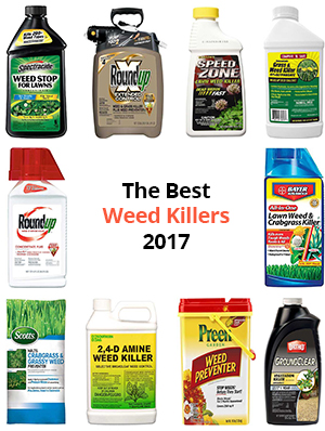 Best-Weed-Killers-Revews-Buyer's-Guide