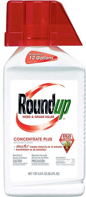 Roundup-Weed-and-Grass-Killer-Concentrate-Plus Review