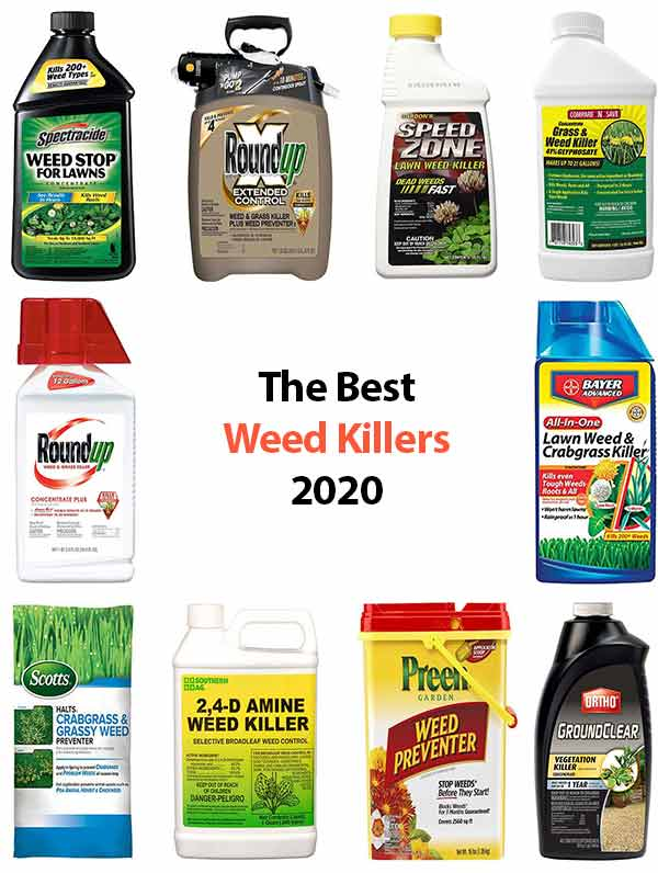 The smart Trick of Best Liquid Weed Killers That Nobody is Discussing